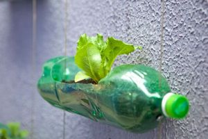 recycled_plastic_bottle_gardening_2f55b